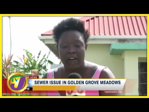 Sewer Issues Plague Residents of Golden Grove Meadows  | TVJ News - July 10 2021