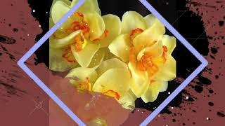 Цветы из фарфора.
