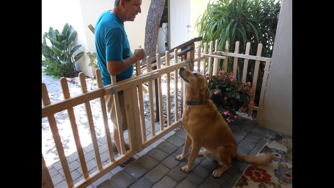 extra through carlson watch porch the doggy gate for pet you diy wide walk review door with or dogs choose