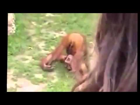 Pee In His Mouth Porn Videos Pornhubcom