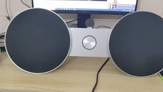 Teat Sound Model : B&O A8
