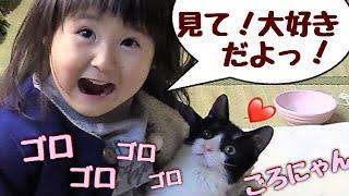 4か月ぶりに再会の子猫が、3歳娘を大歓迎!【猫さんとヒメちゃんはお友達】 thumbnail