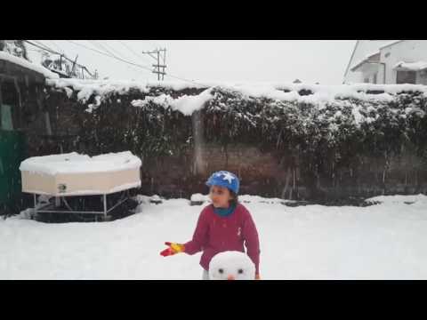 Kashmir Snowfall 06-01-2017