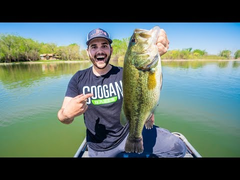Catching BIG Bass On Crankbaits!!! (Spring Fishing)