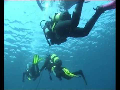 Diving center posidonia blu favignana youtube - Dive center blu ...