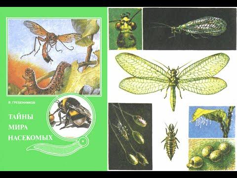 Виктор Гребенников/Тайны мира насекомых. Аудиокнига. Мир насекомых- полный тайн и загадок!