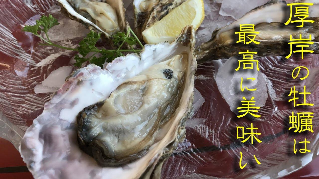 日生 牡蠣 食べ 放題