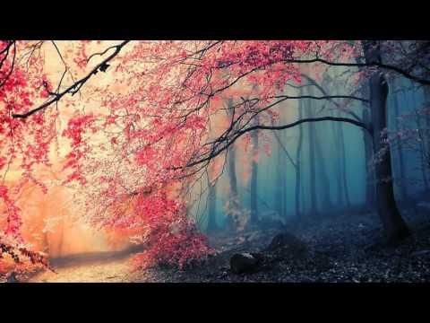 Heidnu - Breath of Life