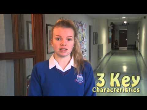 The Voluntary Sector in Ireland (Resource Video One)