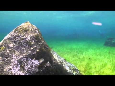 Зеленое Озеро в Австрии Грюнер Зе (Grüner See)