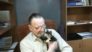 Не будьте равнодушны    Месяц назад этот котенок умирал от слепоты, холода и голода