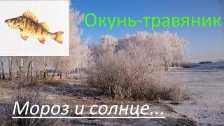 Пора на Рыбалку серия 4 Окунь травяник Солнце мороз и иней
