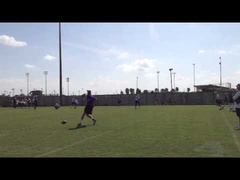LSU WR Derrick Dillon runs gauntlet drill