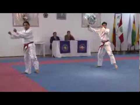 Examen 1er GUP cinturón punta negra Taekwondo ITF IPTI: Luissi Fernández, Alvaro Doomer. 7 dic 2013
