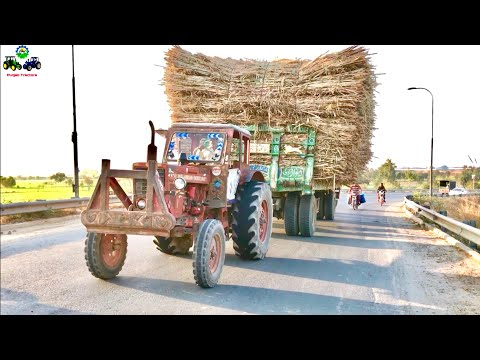 MTZ 50 BELARUS | Power Test | Fully loaded Sugar Cane Trailer