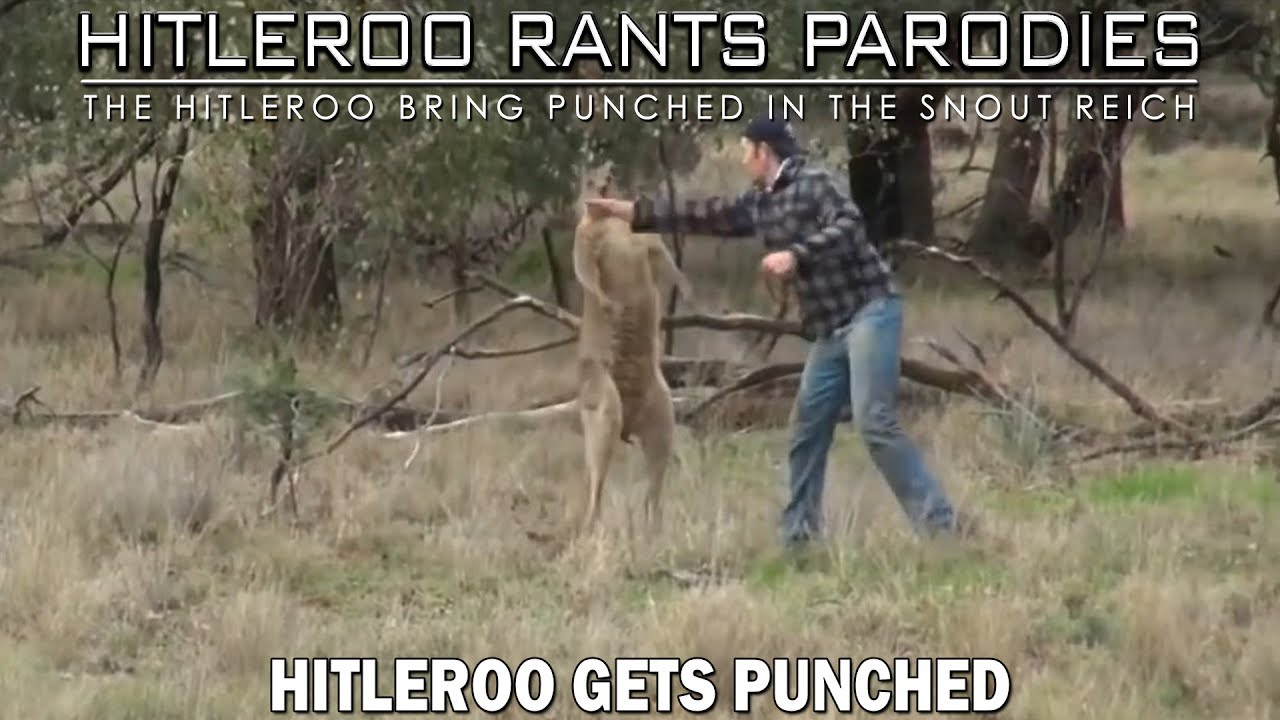 Hitleroo gets punched