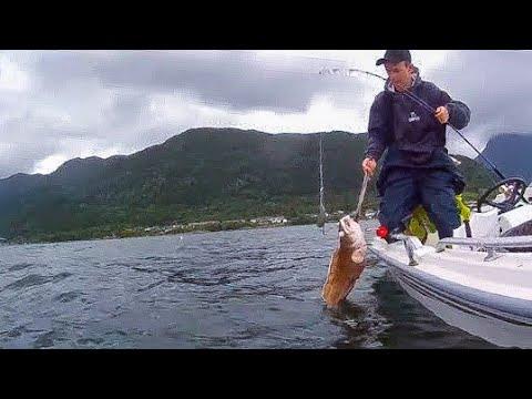 Fiske i Hardangerfjorden #4 | Juni 2017