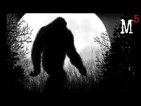 5 Mysterious Creatures Caught on Tape