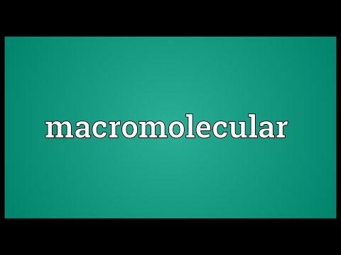 Header of macromolecular