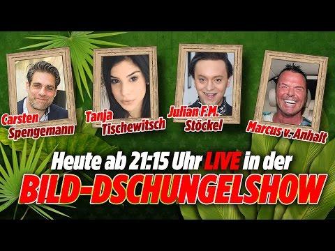 Tanja Tischewitsch, Julian F.M. Stoeckel, Carsten Spengemann, in der BILD-Dschungel-Show 27.01.17