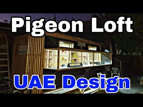 Racing Pigeon Loft Design in UAE | Art Din Gonzaga
