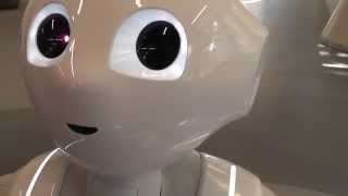 Pepper Robot at Aldebaran - Dancing (NAO Fall's over in the background)