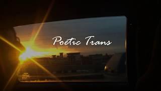 Poetic Trans ( For Kaleem)