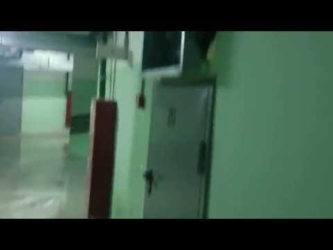 Парковкин потоп, часть 1