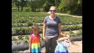 U-Pick Fun At Boone Hall Farms