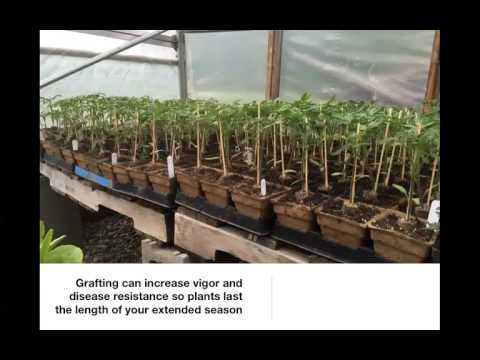 Andrew Mefferd: Ten Tips for Greenhouse and Hoop House Production