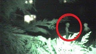 Alien Video Taped In My Back Yard