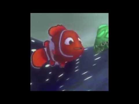 Enemy Spotted Nemo Vine - JFF [Remastered]