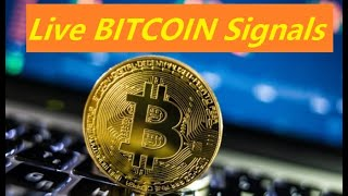 Live Bitcoin Ethereum Litecoin Ripple Signals, BTC | ETH | LTC | XRP | UST Big Data Analysis