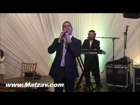 Music by Berko with Shwekey, Benny Friedman, Gertner and Shauly Waldner at Yitzy Waldner's Daughter'
