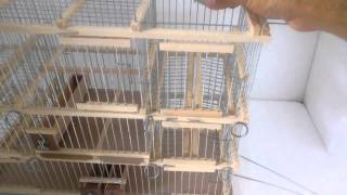 Big Trap Cage & Traval Bird Cages