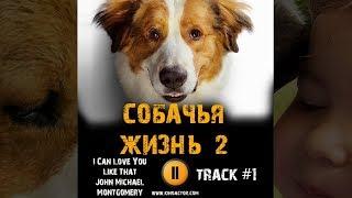 Фильм СОБАЧЬЯ ЖИЗНЬ 2 2019 музыка OST #1 I Can Love You Like That A Dog's Journey