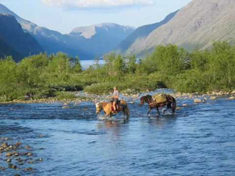 Rondane National Park  Official travel guide to Norway