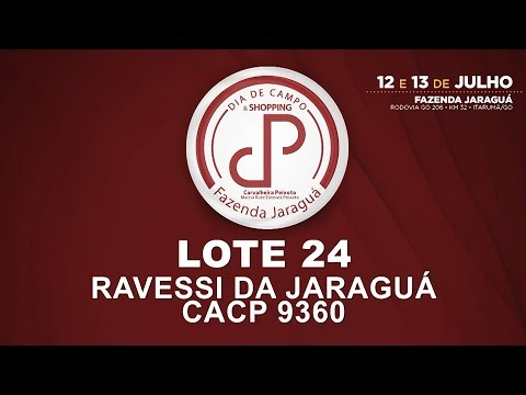 LOTE 24 (CACP 9360)