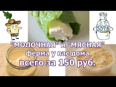 Как сделать соевое мясо в домашних условиях из соевых бобов