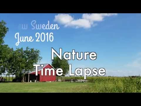 New Sweden June 2016