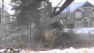 Приколы +100500 -Бритва для леса