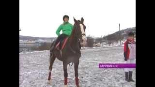 В Мурманске прошли соревнования по верховой езде