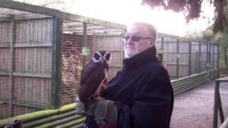 Will's Wild Animal Encounters at Hoo Farm - 1/11/2015 50
