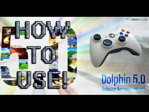 dolphin xbox one controller not working