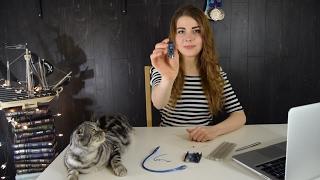 Умный дом. Начинаем работать с arduino. Управляем светодиодом через web-интерфейс(Желаете создать умный дом своими руками и вложиться в минимальную сумму? Начнем с самого простого и дойдем..., 2017-02-06T20:46:12.000Z)
