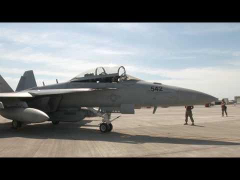 Electronic Attack Squadron-132 brings EA-18G Growler to the Pacific