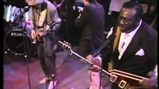 Stevie Ray Vaughan, B B King, Albert King, Paul Butterfield - The Sky Is Crying
