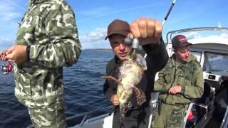 Рыбалка на Треску 2015. Белое море. Кольский п-ов