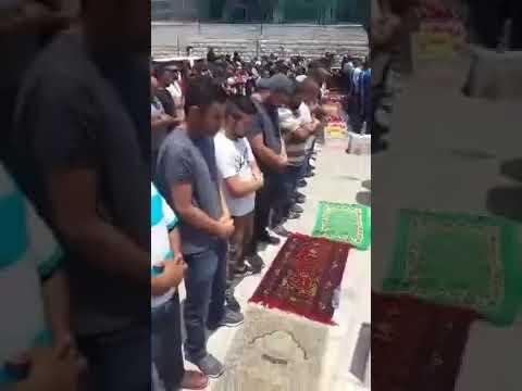 VIRAL!! Biadab Dan Sadis Tentara Israel Menembaki Jamaah P