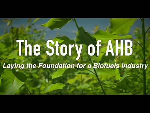 The Story of AHB: Laying the Foundation for a Biofuels Industry